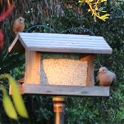 weathered wood birdfeeder