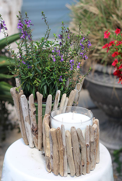 Driftwood_plant and candleholders