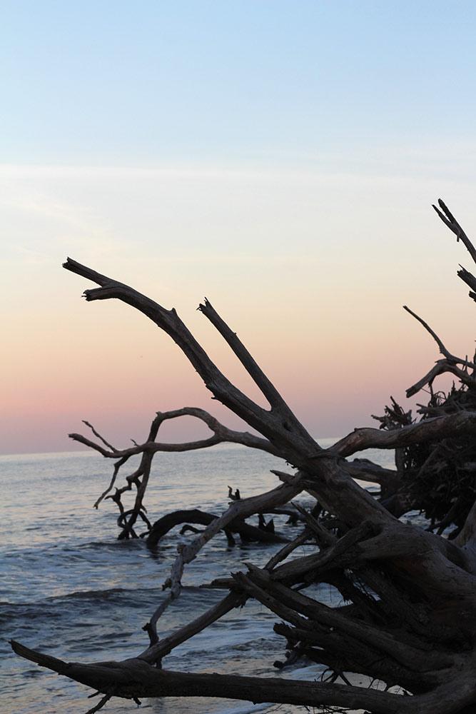 Jekyll Island35
