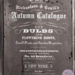 Autumn Bulb Catalogue