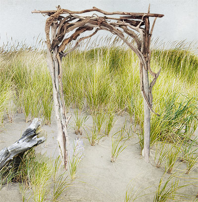 driftwood arch
