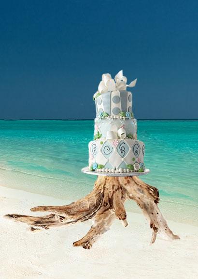 Cake on driftwood