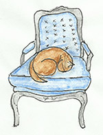 cat on Bergere chair
