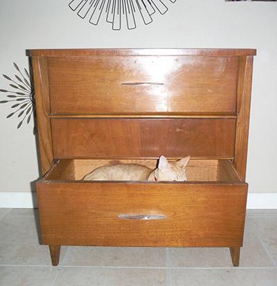 Driftwood Mid-Century dresser