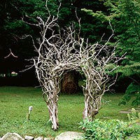 Landscaping with Driftwood Archway