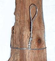 Driftwood Planter